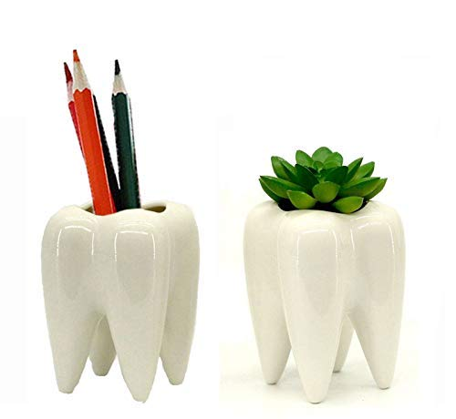 planters shaped as teeth with a succulent and pencils in them